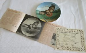 RED TAILED HAWK PLATE COA