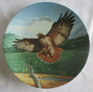 Red Tailed Hawk Collectors Plate